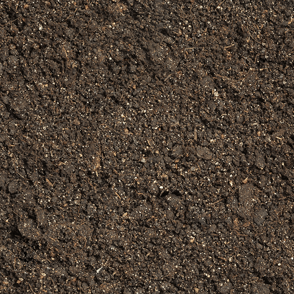Screened soil from AMS