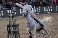 Danielle Olliffe riding Daisy (1)