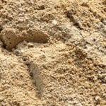 Medium washed sand