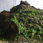 Green Waste Skip Hire